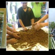 IWD Tree Planting Ceremony by Jewel JB